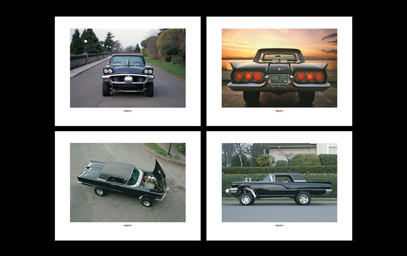 Bird Cars Ad